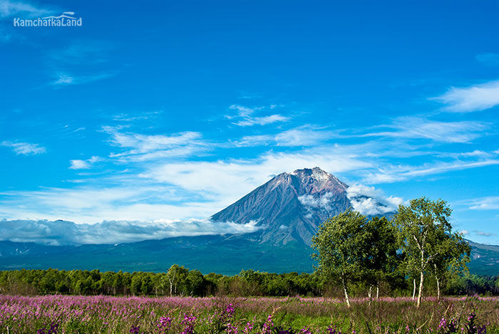 Tours to Kamchatka in August